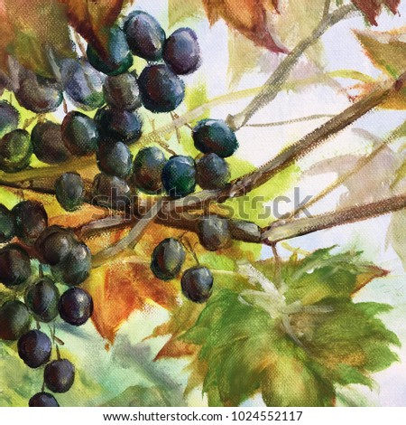 Original oil painting on canvas for print. Black very ripe Italian grape Refosco on green background Close up painted illustration for wine bar, restaurant, enoteca, wine shop or special interior