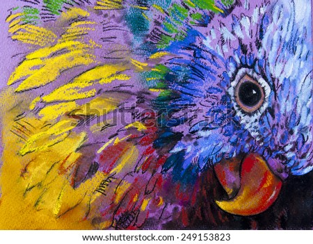 Original pastel painting on paper.Parrot surrounded by colors. - Shutterstock ID 249153823