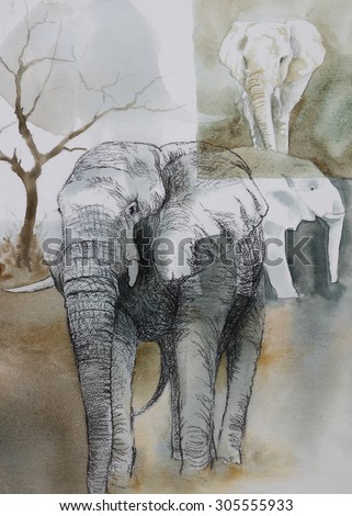 Original watercolour, collage of elephants in the wild.