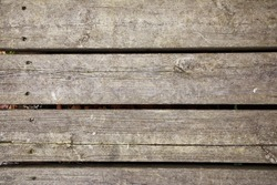 Original wood planks with spikes and autumn leaves in nature for texture and backgrounds