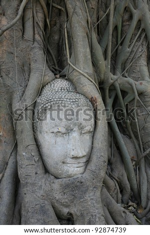 Ornament: Sandstone Buddha head in the tree at Maha-tad wat in Ayutthaya, Thailand