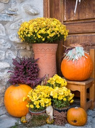 Ornamental arrangement with big orange pumpkins and yellow flowers in a vase.
