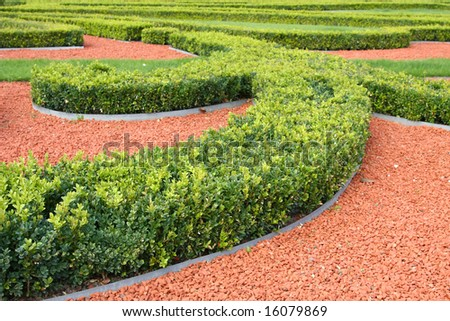 Ornamental Garden Bushes In Landscaped Garden Various Shapes Stock