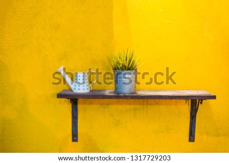 Ornamental plants in vintage can and ceramic watering. There are on wooden shelf with yellow wall background. #1317729203