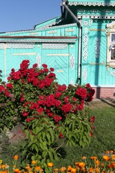 Ornamental windows with carved frames on vintage wooden rural house in Suzdal town, Russia. Bush of decorative red climber roses: flowers in summer garden. Russian style in architecture, gardening