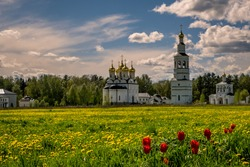 Orthodox church in the middle of a blooming field of flowers
