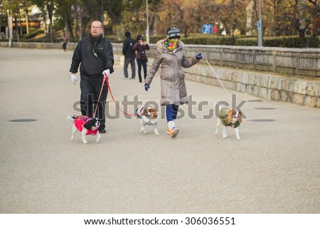OSAKA, JAPAN - FEBRUARY 9, 2015: An unidentified people are leashing the dogs and walking around Osaka Castle Park.