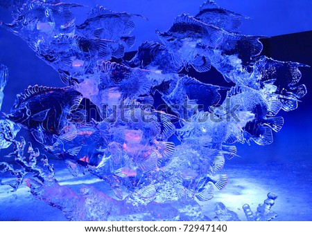 Ottawa on feb 12 ice sculpture of fish illuminated at for Ice fishing at night