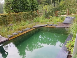 Our swimmingpool in the garden