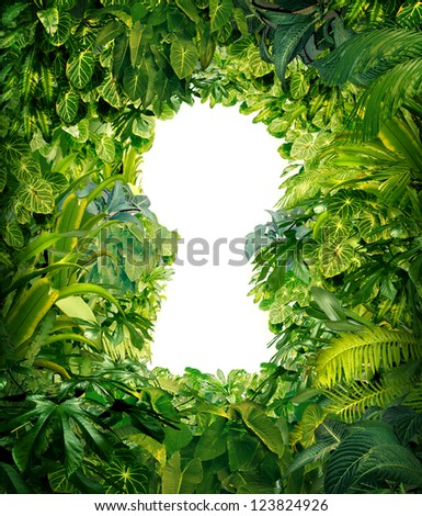 Out of the jungle as a nature concept of freedom and success from chaos and confusion with a thick green rain forest as a group of tropical plants in the shape of a blank white glowing key hole.