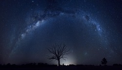 Outback Australia under the night sky