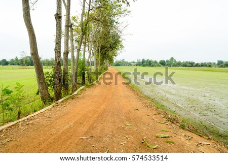 outback road in thailand #574533514