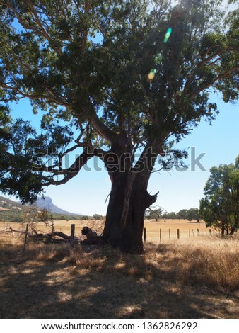 outback visit australia #1362826292