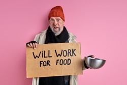 outcast man will work for food, stand with cardboard and iron bowl in hands need shelter and food, suffering from hunger, isolated pink background