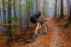 Outdoor adventure, woman on mountainbike in mountains forest landscape. Woman cycling MTB flow trail track. Sport activity.