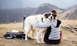 outdoor camping with a dog