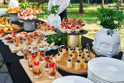 Outdoor catering banquet in summer. Table with snacks, canapes and fruits at a summer banquet