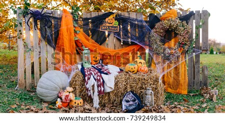 Outdoor halloween background beautiful decoration fall and autumn
