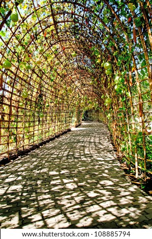 Outdoor Park Archways over a Paved Path on a Sunny Day.
