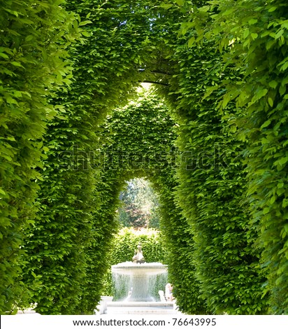 Outdoor Park Archways over a Paved Path on a Sunny Day