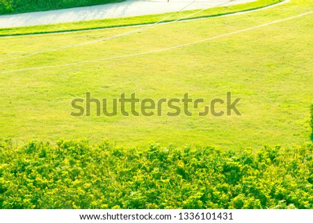 Outdoor parks ,Outdoor lawn #1336101431