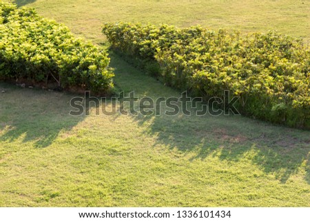 Outdoor parks ,Outdoor lawn #1336101434