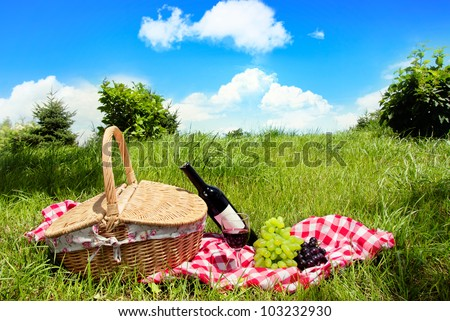 Outdoor picnic at sunny day. - stock photo