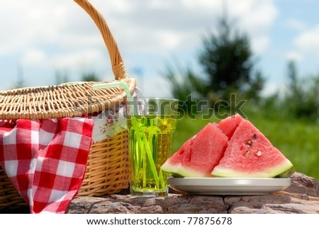Outdoor picnic on at sunny day