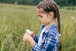 Outdoor portrait of little girl with long hair tied in pigtail, wearing checkered shirt, keeping camomile in hands while having walk on green meadow. Little adorable girl picking up camomiles on field