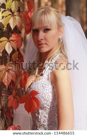 Outdoor portrait of  young woman at autumn time/Lovely bride