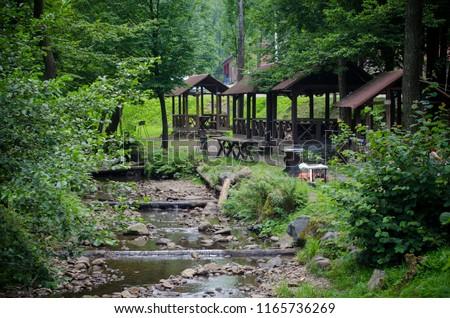 Outdoor recreation - picnic areas along a mountain river #1165736269