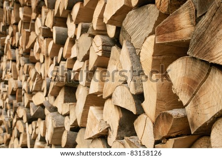 Outdoor shot of a large pile of firewood in soft daylight