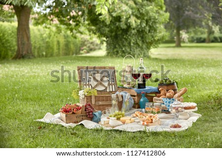 Outdoor summer lifestyle with a gourmet picnic laid out on the grass in a park with bread rolls, berries, cheese, meat kebabs, pickles, red wine in stylish glasses and a vintage lantern on a hamper Stockfoto ©