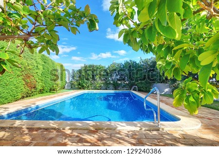 Outdoor swimming pool with blue water near the garden.