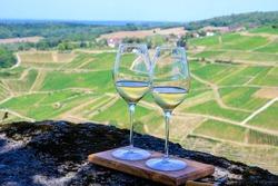 Outdoor tasting of white or jaune Jura wine on vineyards near Chateau-Chalon village in Jura region, France