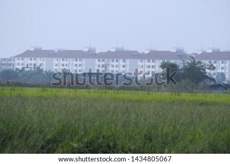 outdoor wide field of landscape #1434805067
