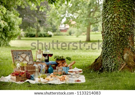 Outdoors lifestyle picnic in a lush green park with a tasty selection of fresh fruit, bread, pickles, cake, wraps, wine and infused water in a hamper on grass