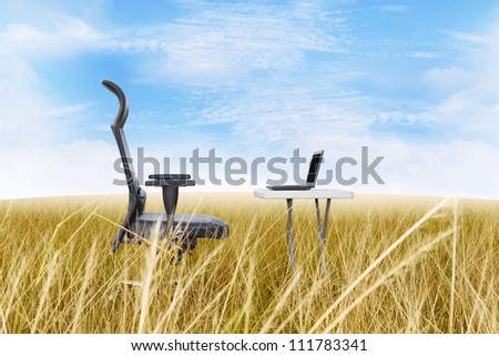 Outside office in a golden grass with a clear blue sky