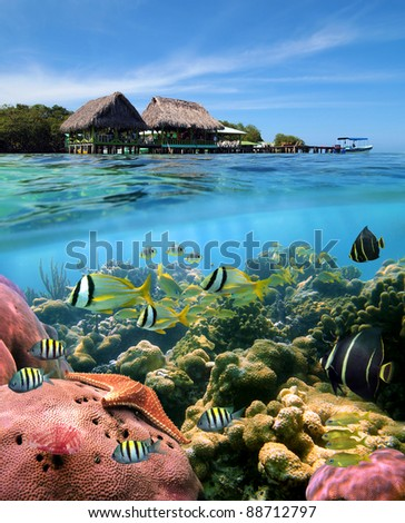 Over and underwater split view with a Caribbean restaurant over the sea and a coral reef with tropical fish, Crawl Cay, Caribbean, Bocas del Toro, Panama