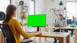 Over the Shoulder: Creative Young Woman Sitting at Her Desk Using Desktop Computer with Mock-up Green Screen. In the Background Bright Office where Diverse Team of Young Professionals Work.