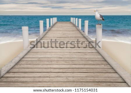 Overcast days keeps everyone away but this seagull resting on a pillar of the old wooden pier leading into the tropical turquoise waters of the sea.