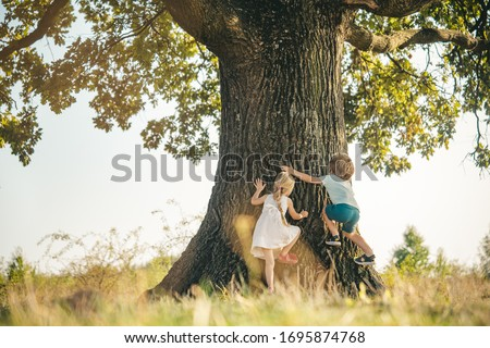 Overcoming the fear of heights. Happy children on countryside. Climbing trees children. Little boy and girl climbing high tree. Funny brother and sister