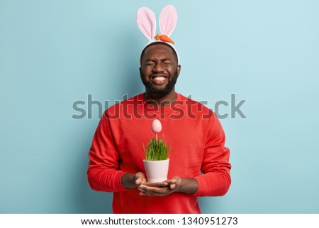 Overemotive plump dark skinned adult man holds vase with green grass where Eatser egg grows, prepares for hunt or egg rolling, wears bunny ears and red sweater, isolated over blue background