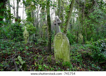 overgrown grave yard, nunhead cemetery - stock photo