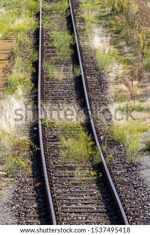 overgrown tracks with old wooden planks, Löbau, Saxony, Germany #1537495418