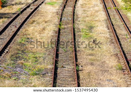 overgrown tracks with old wooden planks, Loebau, Saxony, Germany #1537495430