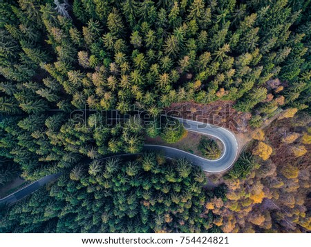 Overhead aerial top view over hairpin turn road bend in countryside autumn pine forest.Fall orange,green,yellow,red tree woods.Mountain curve street path background.Straight-down above perspective.