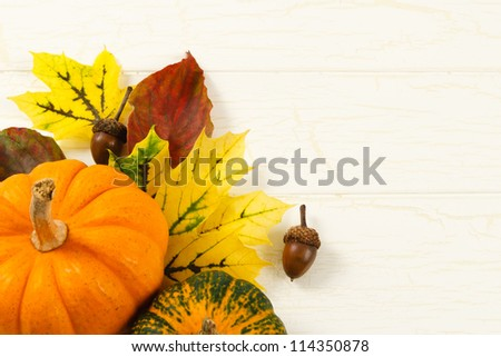 Overhead close up image of traditional Fall decorations with pumpkin, acorns and colorful leaves against and aged white wood background with copy space on right