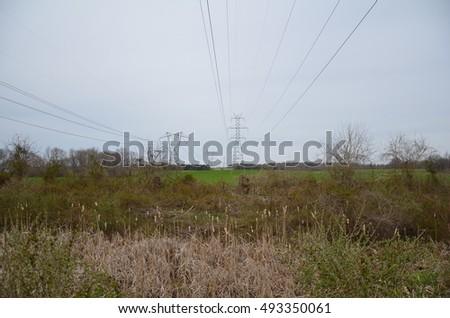 overhead power lines in a field #493350061