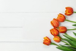 Overhead shot a bouquet of orange and yellow Spring tulip flowers and blank paper card for Mother's or Women's Day over white wood table top. Flat lay top view style.